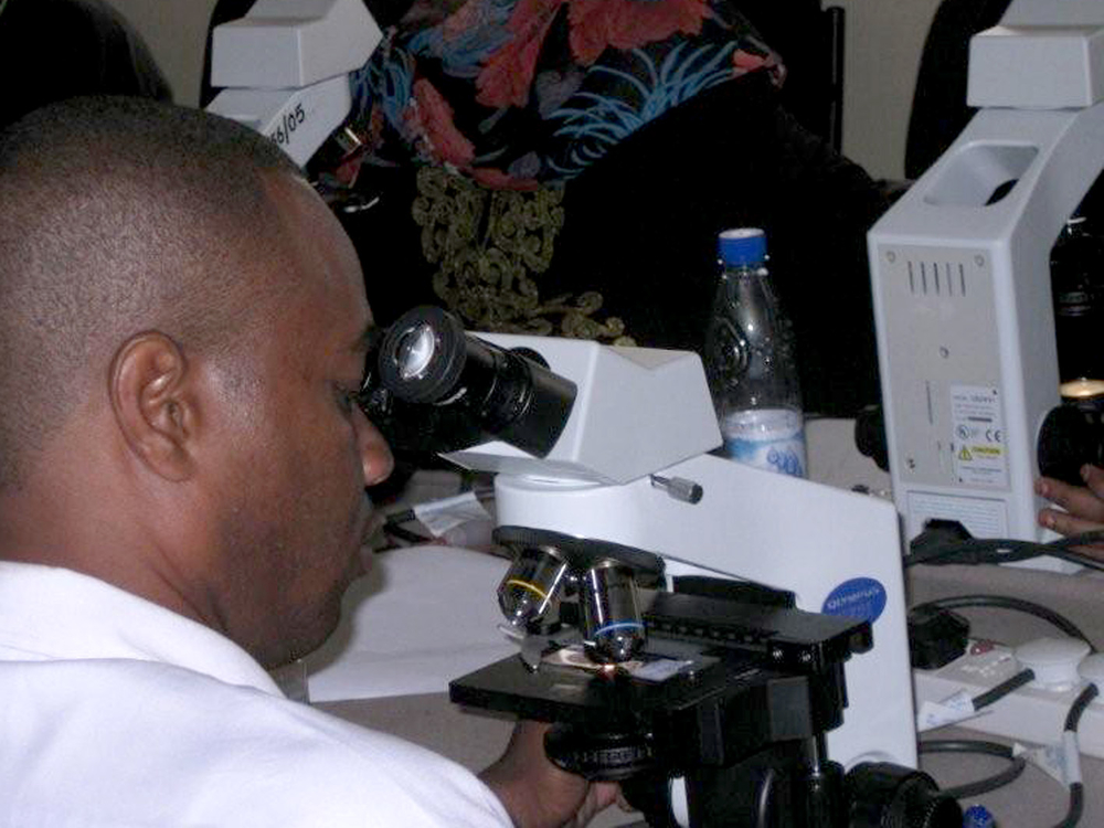 Africa in the News: Malaria Prevention Efforts Find Success in Zanzibar